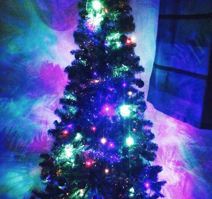 Christmas Tree vs. Dinner