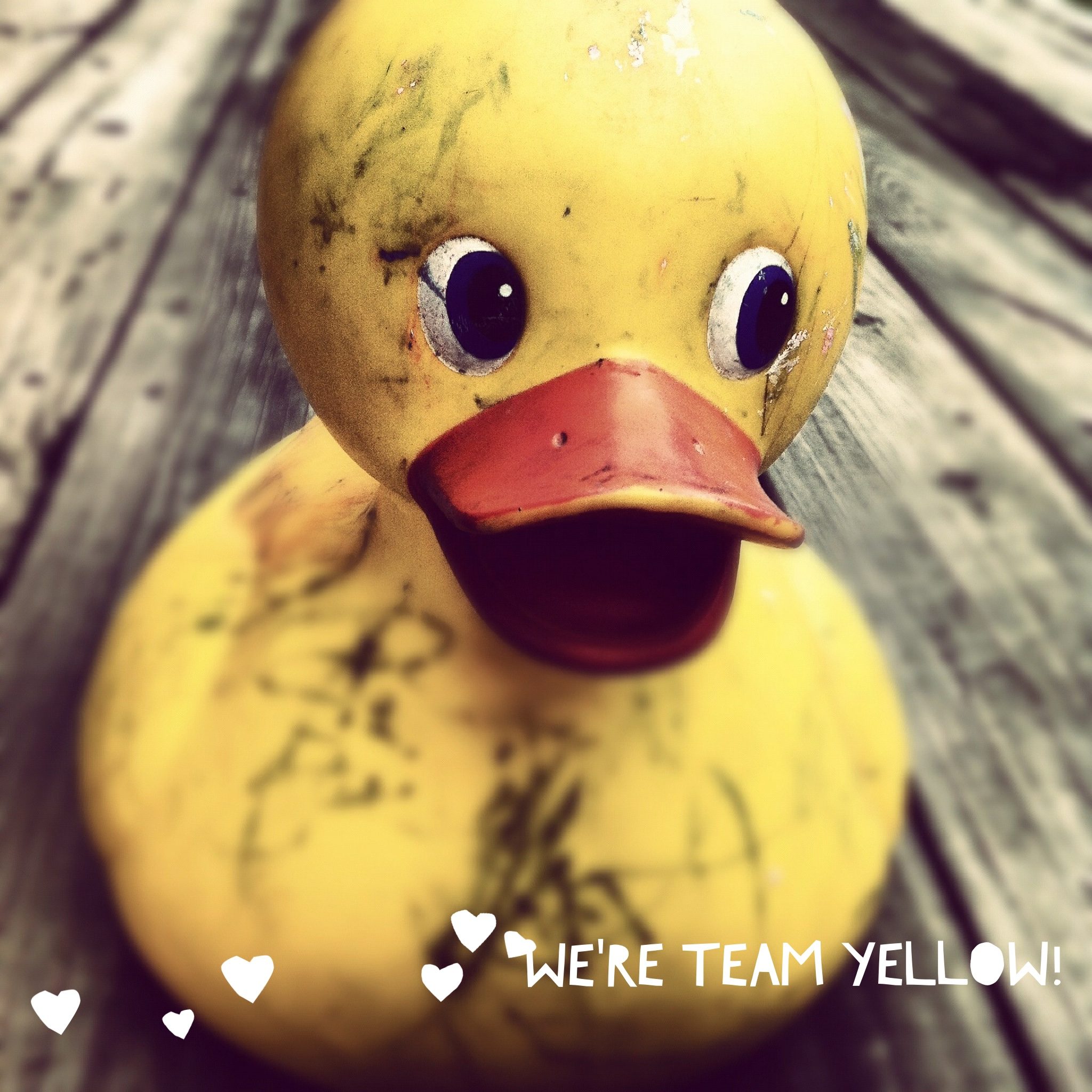 Baby Team Yellow Rubber Duck