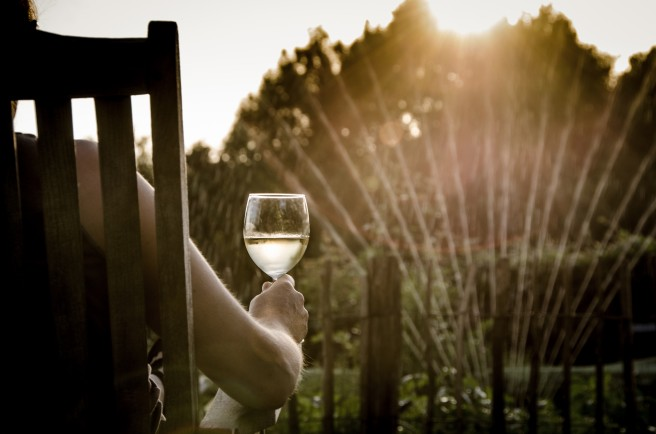 Wine summer garden