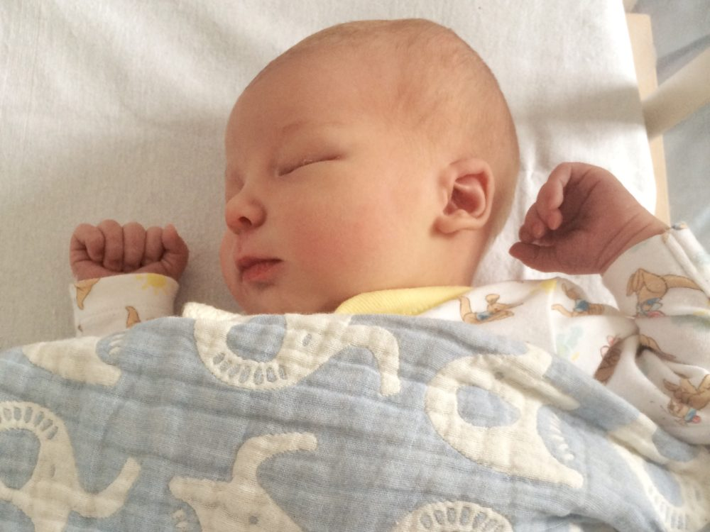 Pickle at only two days old sleeping in the hospital