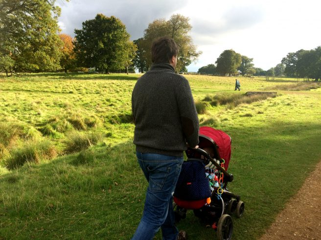 Daddy pushchair National Trust Charlecote Park