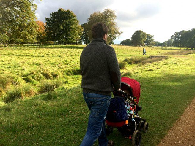 Daddy pushchair National Trust Charlecote Park