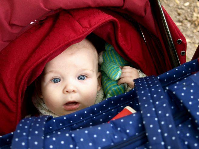 Shocked baby Packwood House