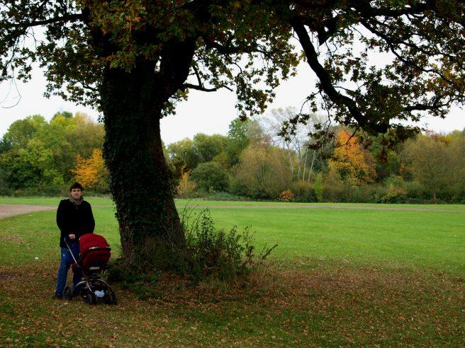 Geocaching Oak Tree