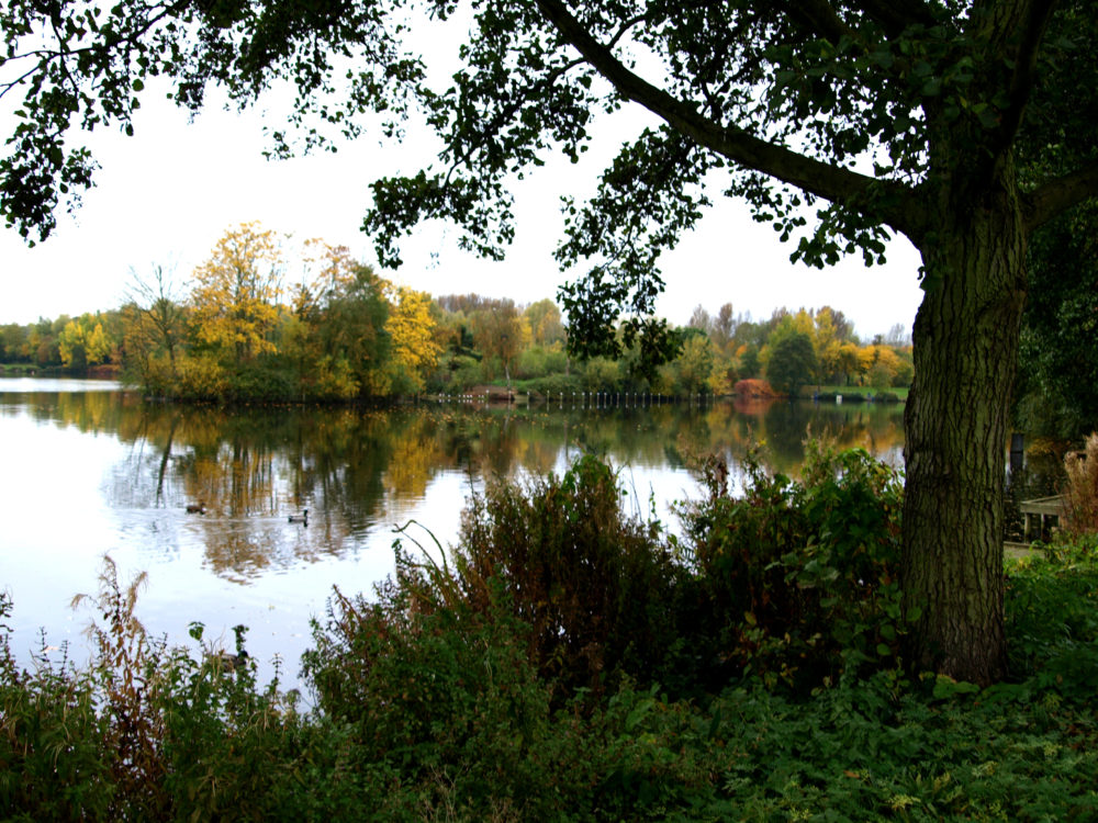 View of Arrow Valley Lake in Redditch