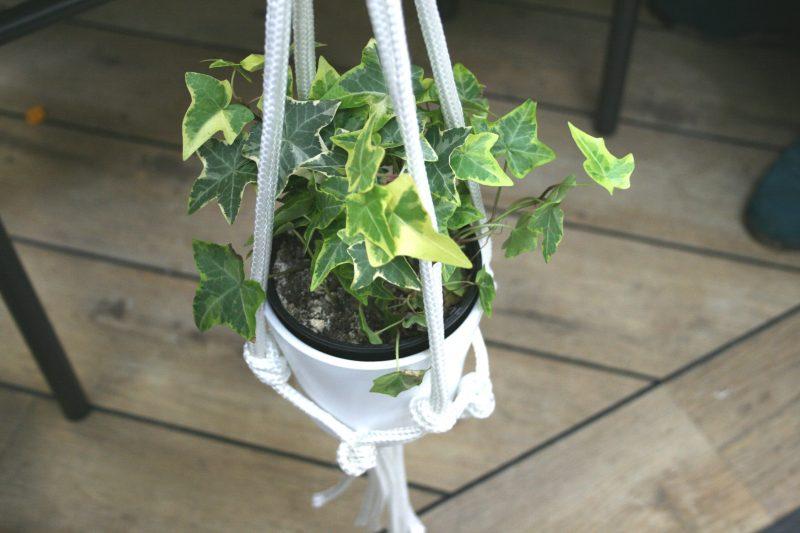 Macrame Plant Pot Holder Homebase Mothers