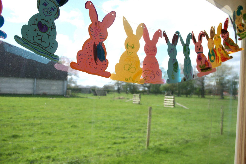 Easter Animals at Beckett's Farm
