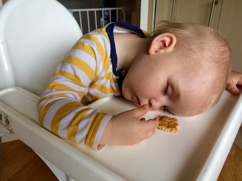 Pickle Asleep in Highchair