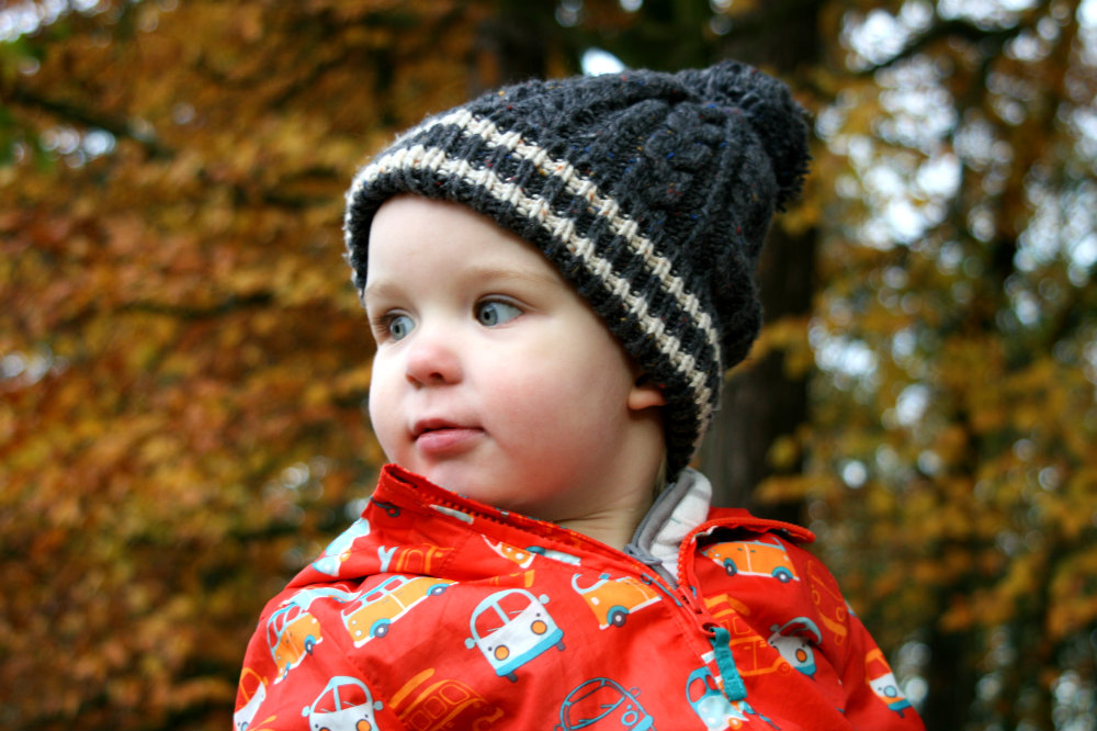 Close up of Pickle in front of an autumnal leaf background wearing woolly hat