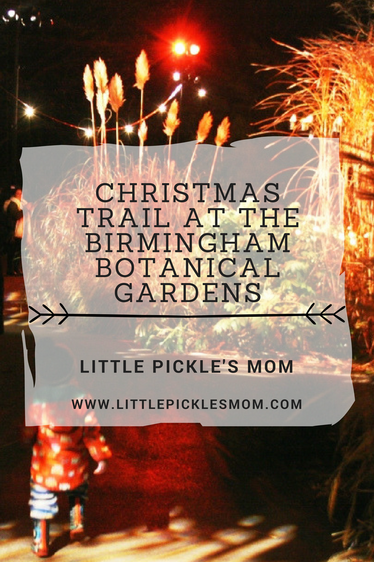 The Christmas Trail at Birmingham Botanical Gardens is a brilliant family day or night out - lots of beautiful lights, so festive and you might even see Father Christmas!