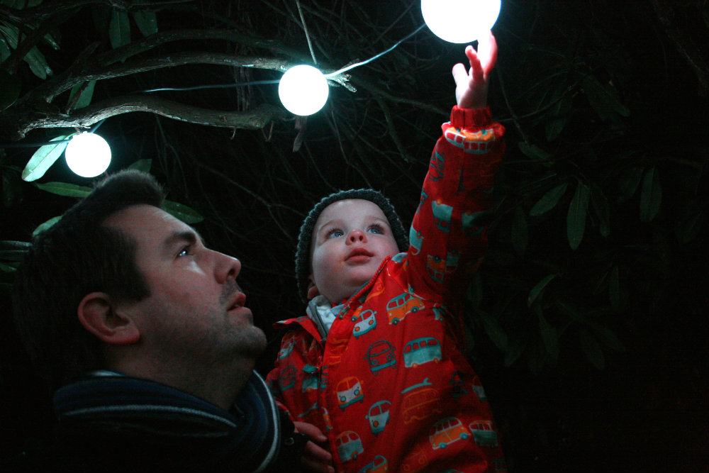 Daddy and Pickle checking out the lights at the Botanical Gardens