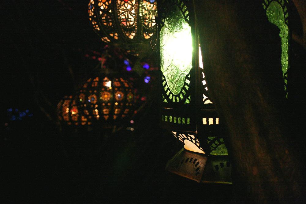 Lanterns at the Botanical Gardens