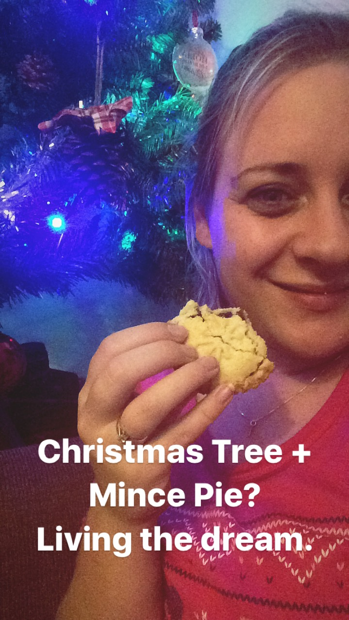 Christmas Tree and a Mince Pie
