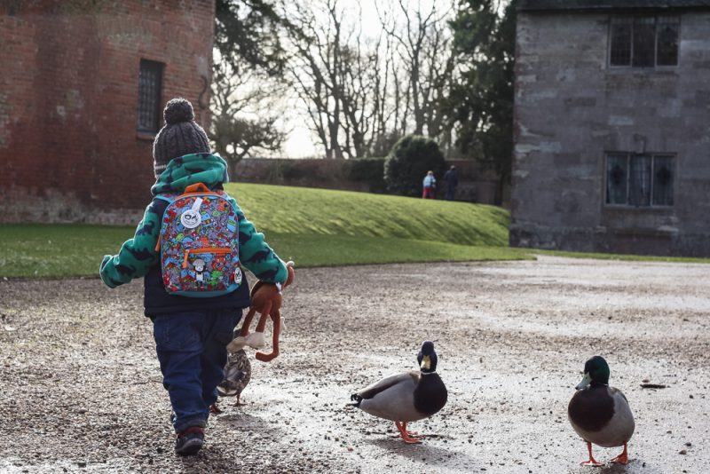 Pickle walking off into the distance wearing his rucksack and carrying Monkey