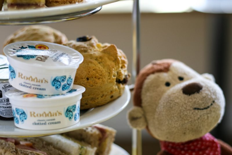 Monkey next to our scones