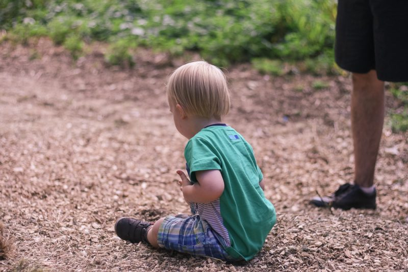 Playing in the dirt and wood chips at Timber Festival