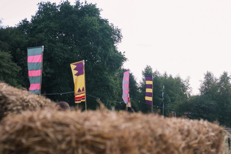 The flags at Timber Festival 2018