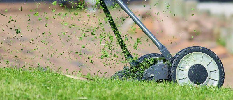 Lawnmower in the garden cutting grass
