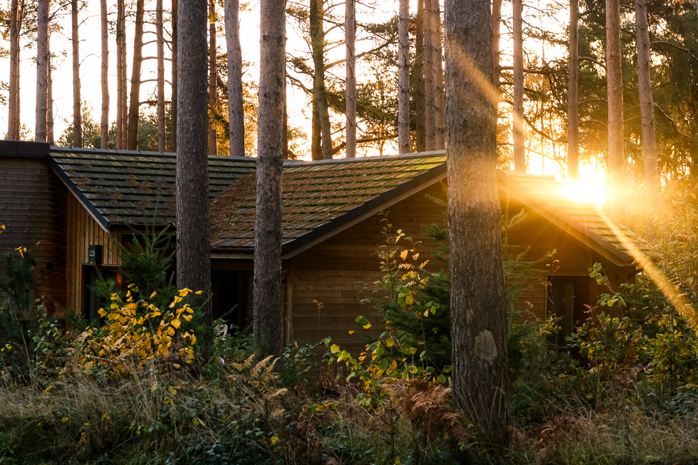 Center Parcs Woburn Forest lodge at sunrise with sun flare