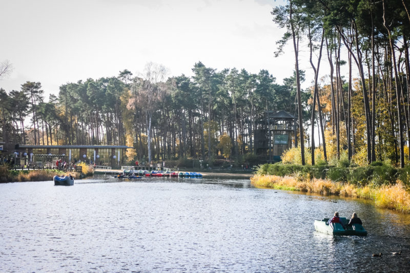 The lake at Woburn Forest Center Parcs, the view from the Plaza