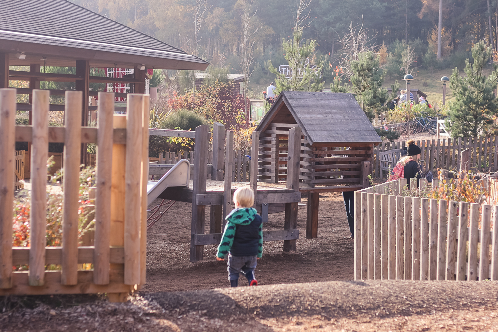 Taking the park in at Woburn Forest Center Parcs