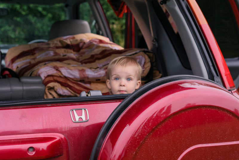 Pickle peering out of the back of LPD's car (Honda CRV) during a camping trip
