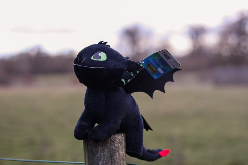 Toothless with his tag attached sat on a post