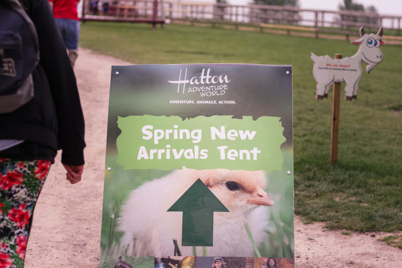 The sign for the Spring New Arrivals tent at Spring Spectacular