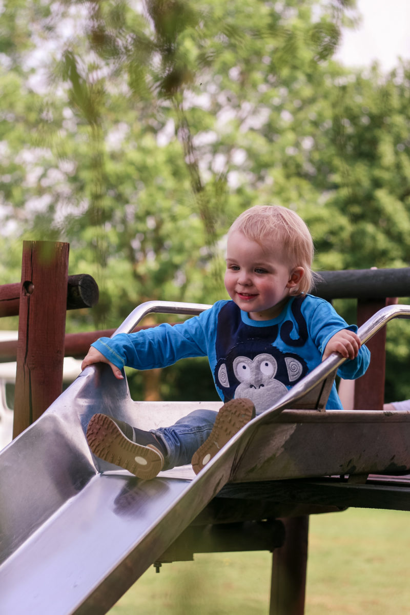 Pickle playing happily on the slide at Hogsdown Farm Campsite