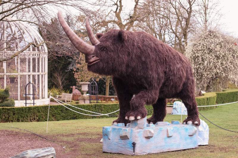 Woolly Rhino at Birmingham Botanical Gardens