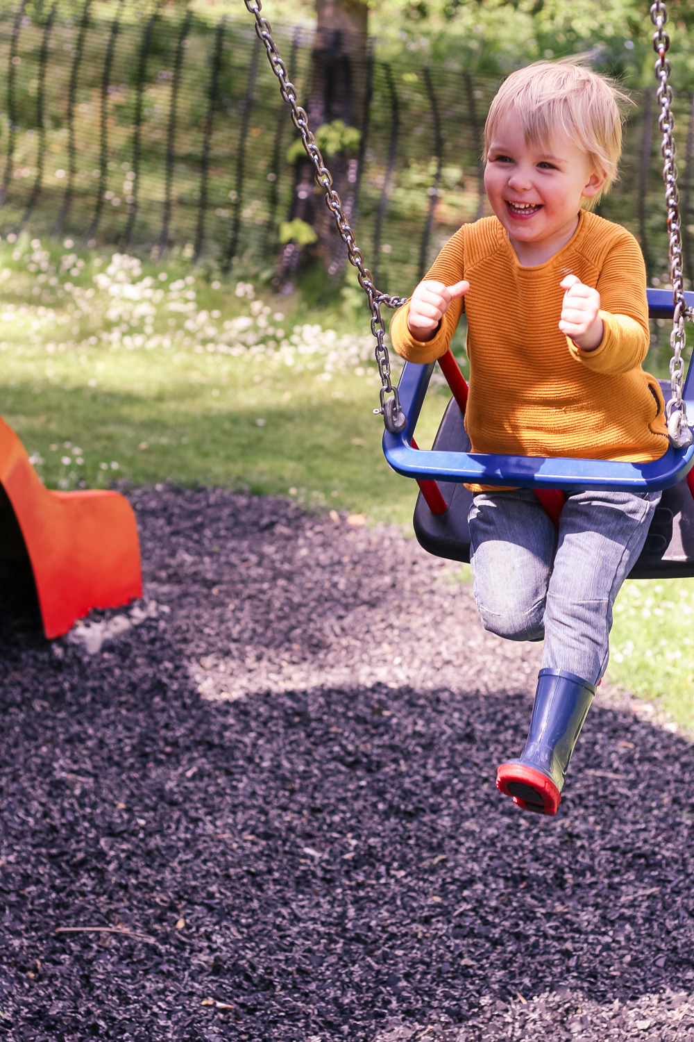Pickle having the time of his life on the swing