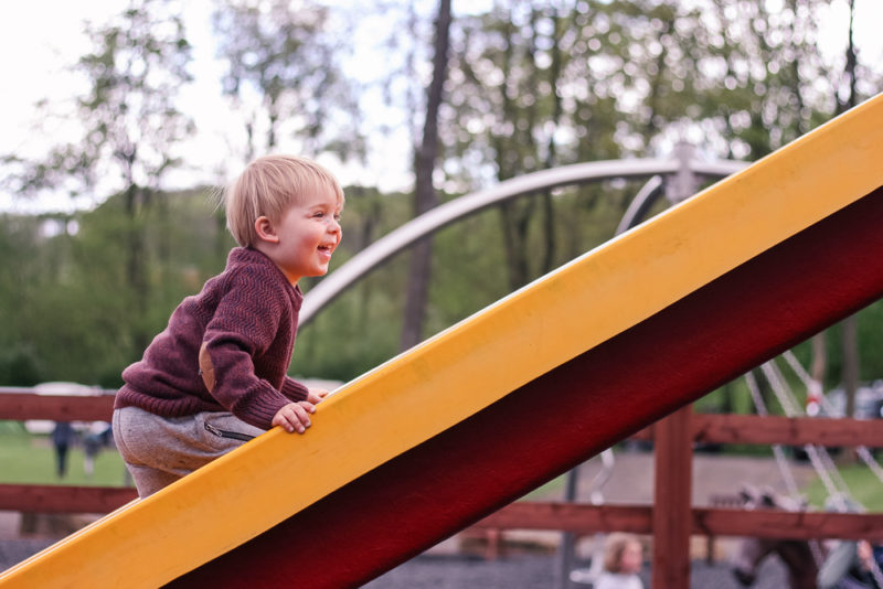 Pickle climbing the wrong way up the slide