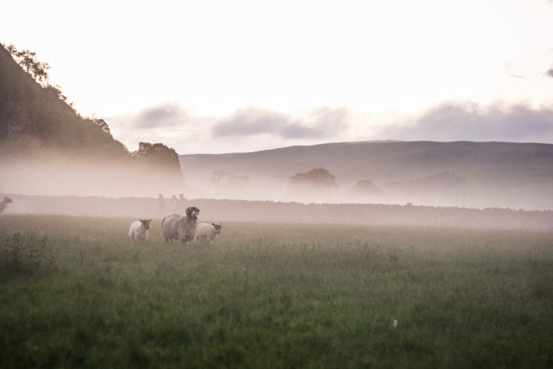 The mist rolling in after the Outdoor Cinema Experience from The North Face UK with Kilnsey Crag in the background