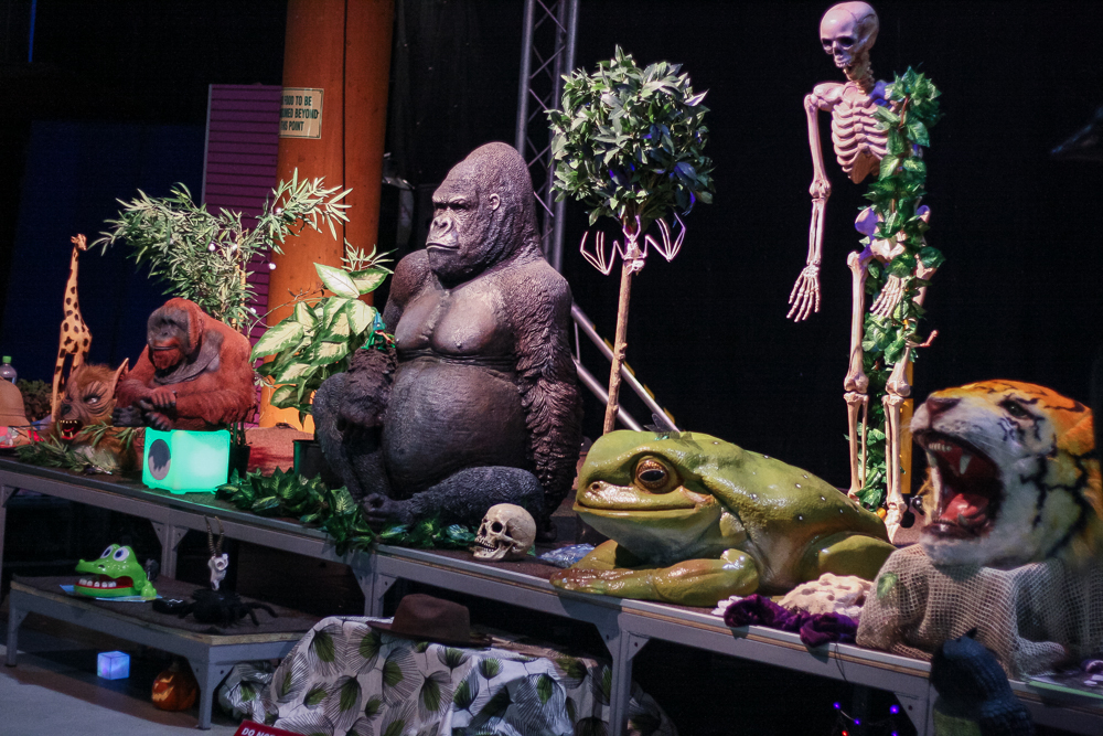 The display of animals for a daily show at Conkers including a Gorilla and Skeleton
