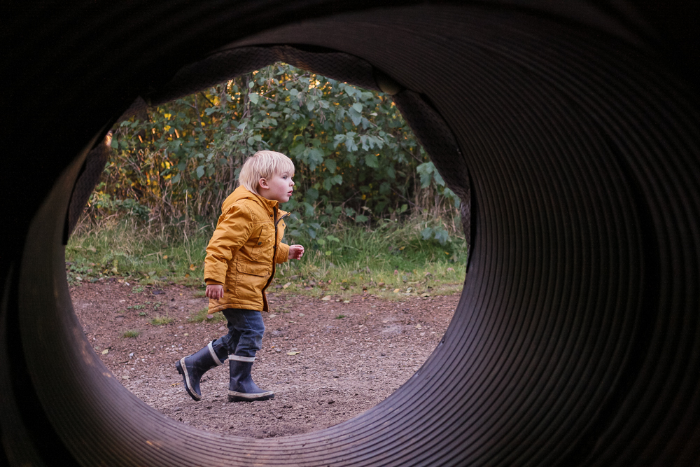 Pickle framed by the Warrens tunnels at Conkers