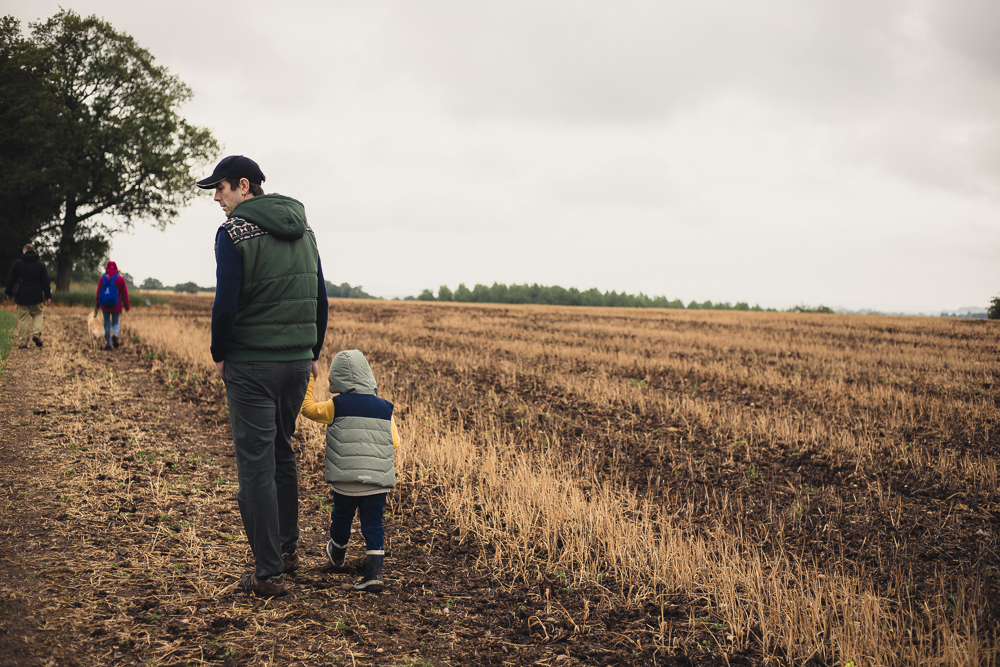 Image from behind of Pickle and Jim at the edge of a brown crop field on the Umberslade Estate Walk