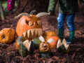Pumpkin Walk at Bodenham Arboretum