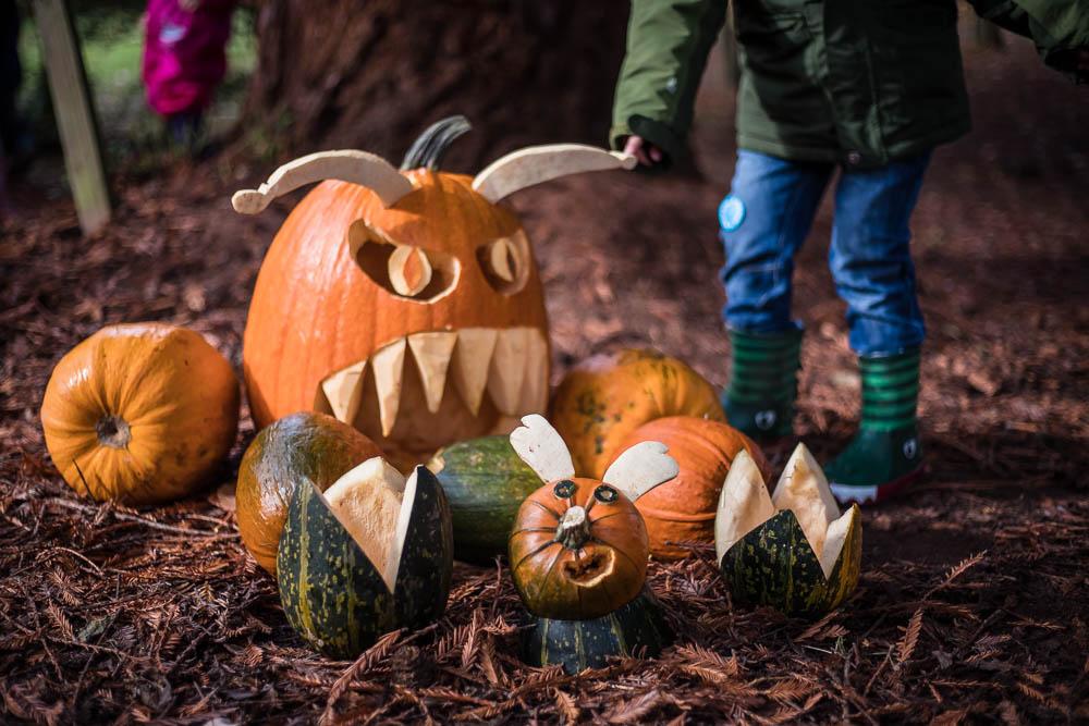 Pumpkin Walk at Bodenham Arboretum
