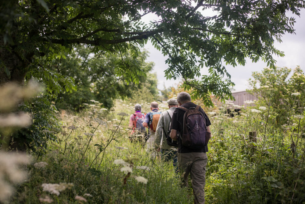 A group of hikers on a Walking The Hills MeetUp near Snowshill Lavender