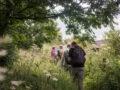 Hiking: Joining Organised Walks